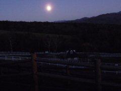 満月の夜_f0019247_06463.jpg