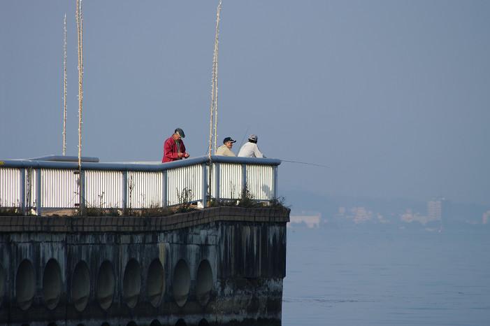 琵琶湖畔をスナップ..._f0152550_21553047.jpg