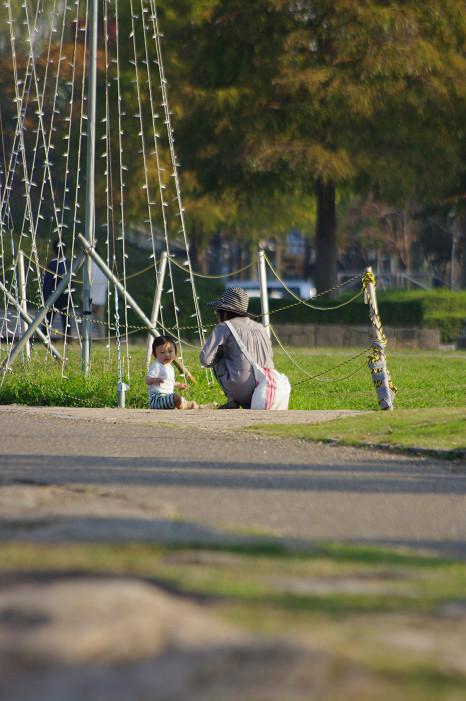 琵琶湖畔をスナップ..._f0152550_21554651.jpg