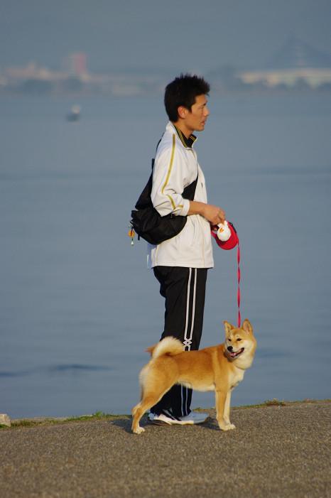 琵琶湖畔をスナップ..._f0152550_21572498.jpg