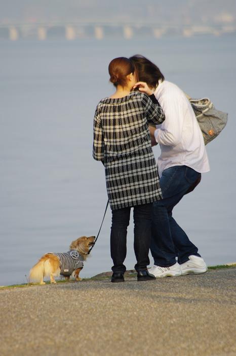 琵琶湖畔をスナップ..._f0152550_21573196.jpg