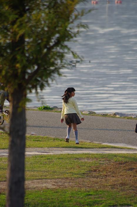 琵琶湖畔をスナップ..._f0152550_21575215.jpg