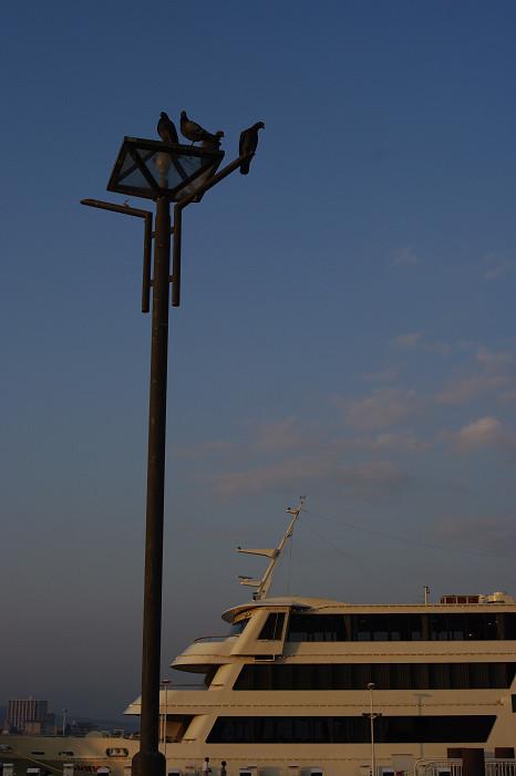 琵琶湖畔をスナップ..._f0152550_21591145.jpg