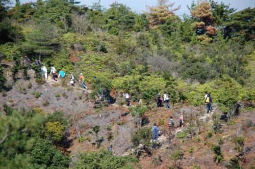 岬高校1年生「山・海・人プロジェクト」サポート_c0108460_23551020.jpg