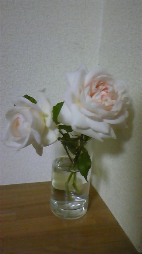 c0202870_23234197.jpg