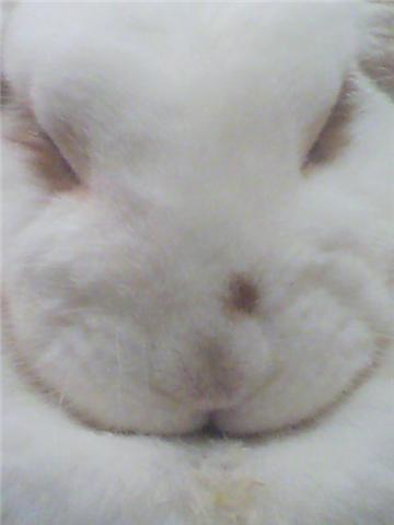 f0189791_14201.jpg