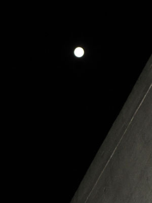 月の輝き_f0061394_1053579.jpg