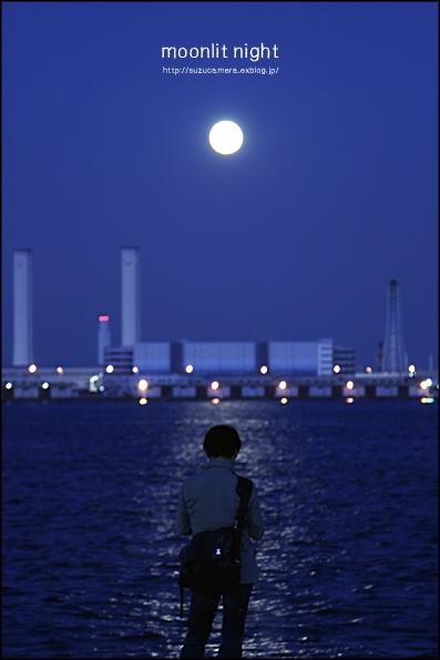 月夜_f0100215_0222235.jpg