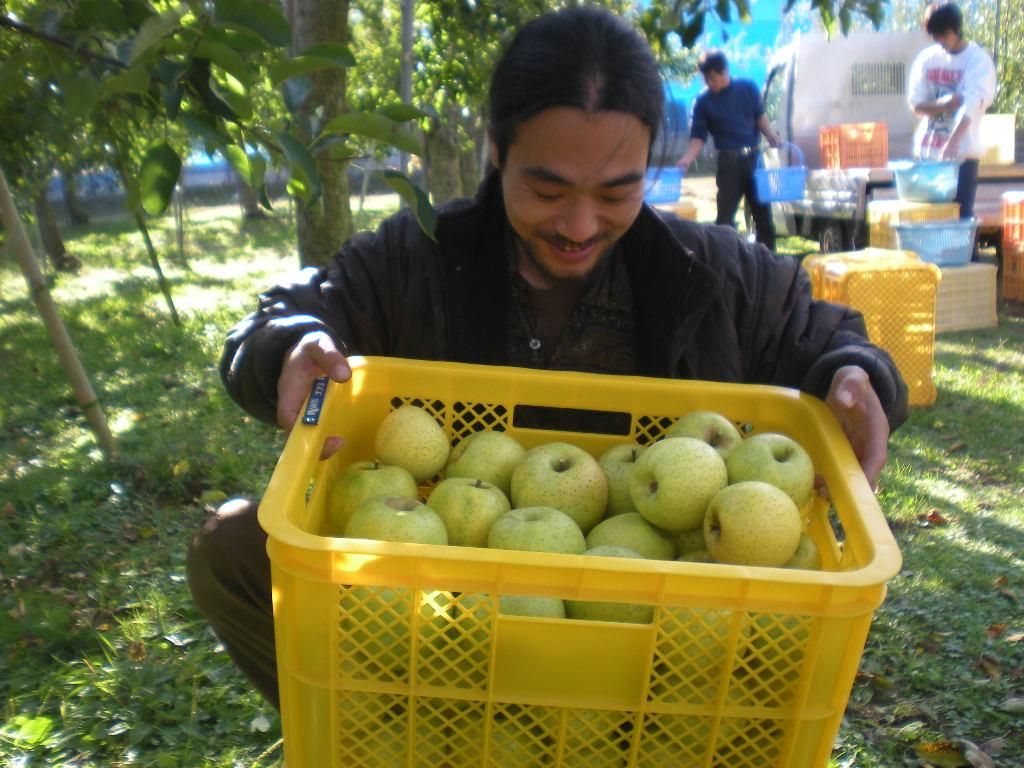 りんご天国!!!_a0125419_22463617.jpg