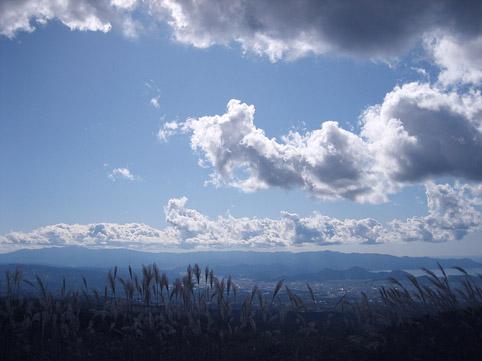 仙石原すすき野へ_c0107829_931290.jpg
