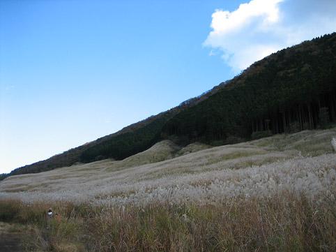 仙石原すすき野へ_c0107829_94066.jpg