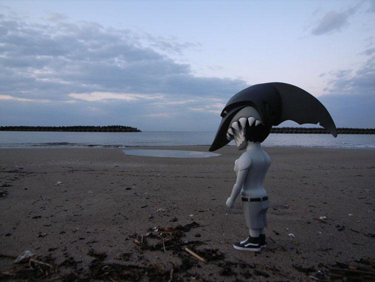 jaws painを連れて日本海までドライブして来た。_a0077842_22142643.jpg
