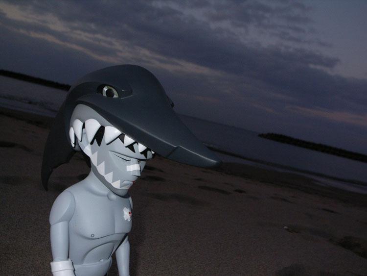 jaws painを連れて日本海までドライブして来た。_a0077842_2214351.jpg