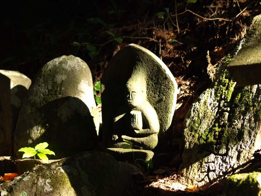 おとぼけ石神    長野県・修那羅山_d0149245_2332241.jpg