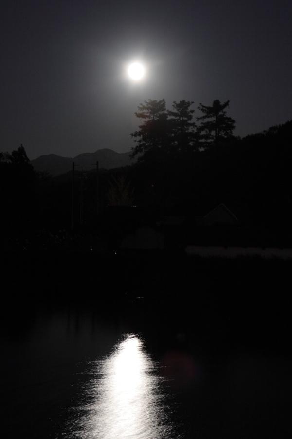 月と山と神社と池、もしかしたら銀杏も・・・_b0157849_10132774.jpg