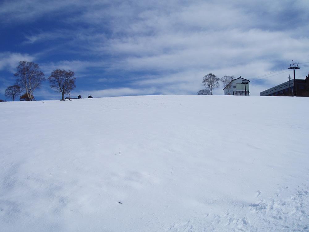 初雪効果!!_b0099190_23224684.jpg