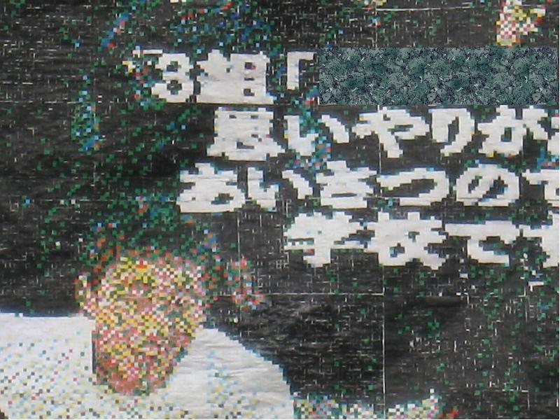 b0066632_320547.jpg