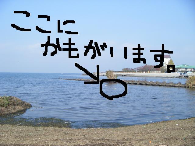 c0210546_16561066.jpg