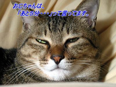 b0097848_206155.jpg
