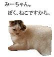 c0201577_8485635.jpg