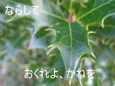 c0205806_196141.jpg
