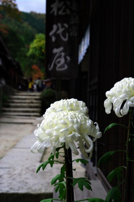 囲炉裏でおやき ~中山道 妻籠宿~_d0145934_16205055.jpg