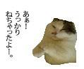 c0201577_7191934.jpg