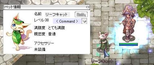 c0188279_17551463.jpg