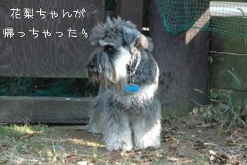 c0126699_2012284.jpg