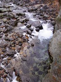 那珂川の源流に行きました。_c0195909_16202411.jpg