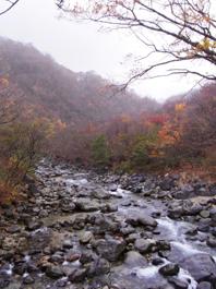 那珂川の源流に行きました。_c0195909_16203253.jpg