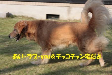 f0114128_1828168.jpg