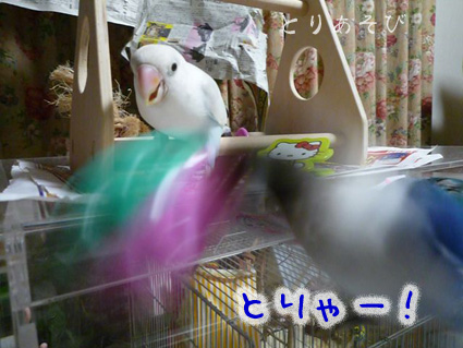 おもちゃの行方_e0147757_2253996.jpg