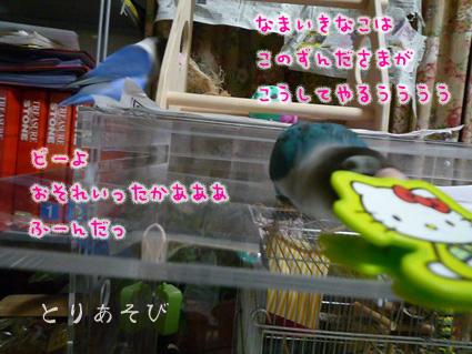 おもちゃの行方_e0147757_2254407.jpg