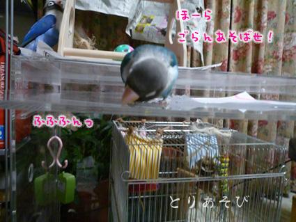 おもちゃの行方_e0147757_22545688.jpg