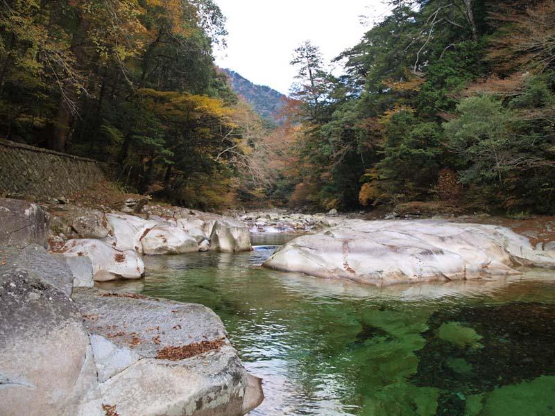 面河渓谷-1_d0127876_12573995.jpg