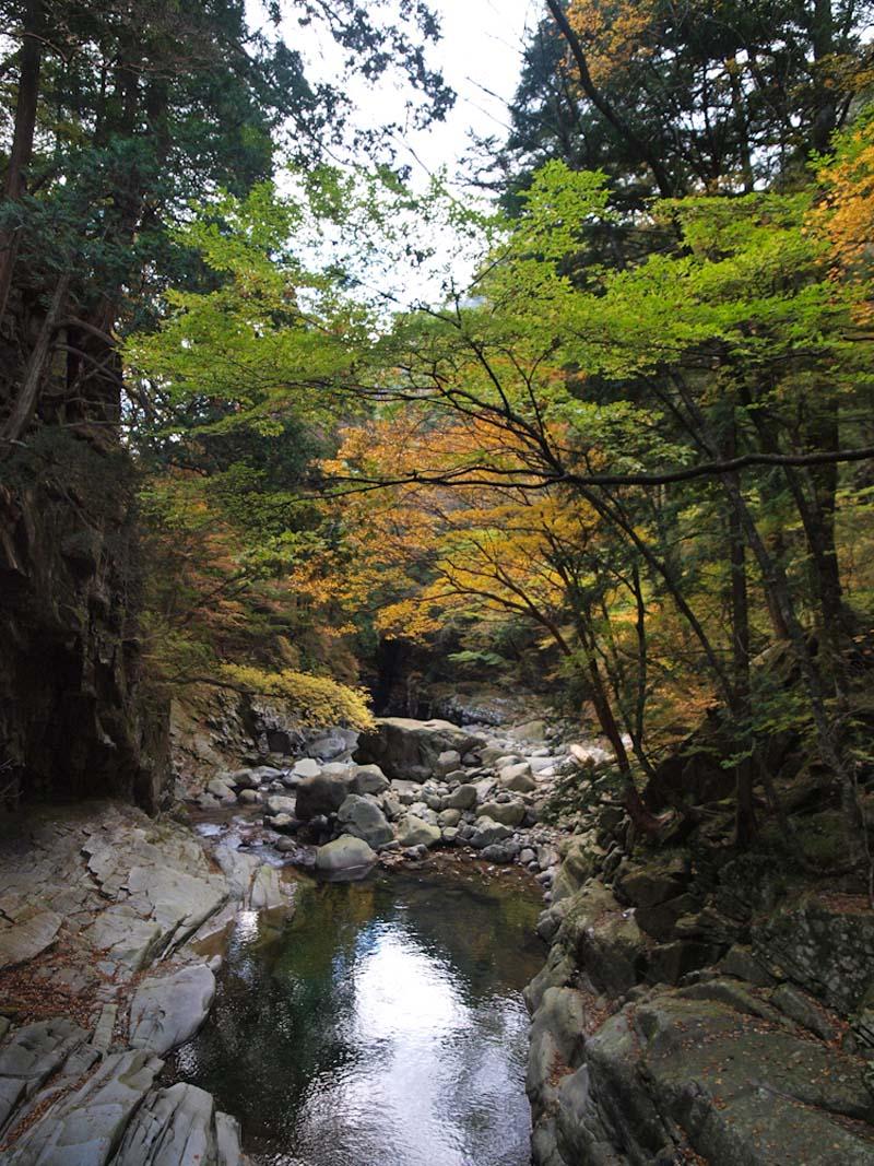 面河渓谷-1_d0127876_1323945.jpg