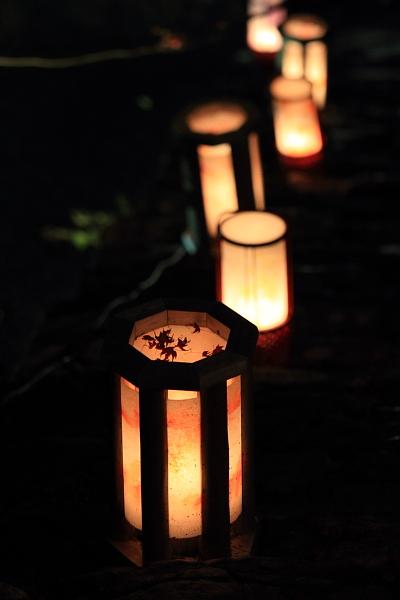 神護寺のライトアップ_e0051888_4424988.jpg