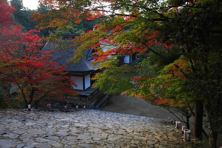 神護寺のライトアップ_e0051888_442528.jpg