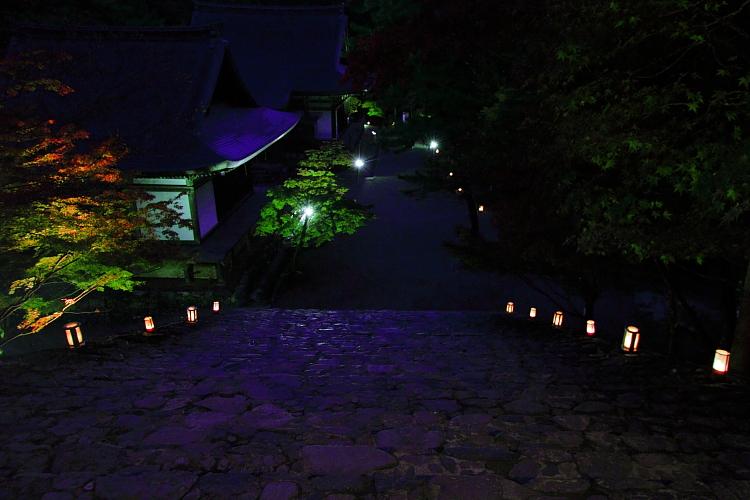 神護寺のライトアップ_e0051888_443299.jpg