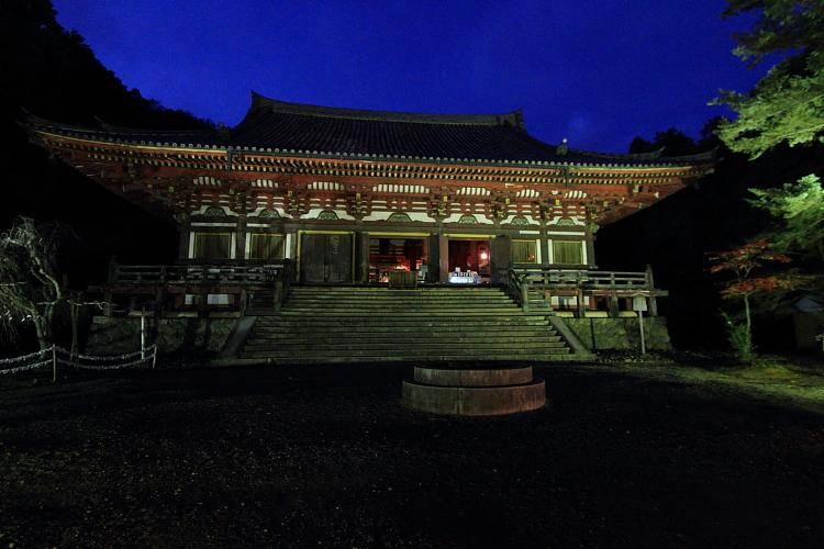 神護寺のライトアップ_e0051888_4433370.jpg