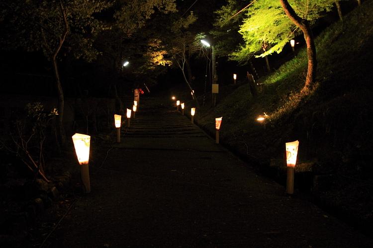 神護寺のライトアップ_e0051888_4452182.jpg