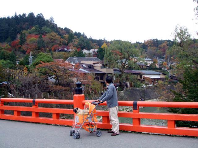 11月8日 その2 飛騨高山_f0019498_18225816.jpg
