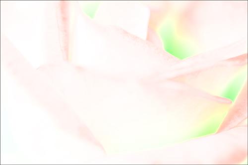 b0139407_15555338.jpg
