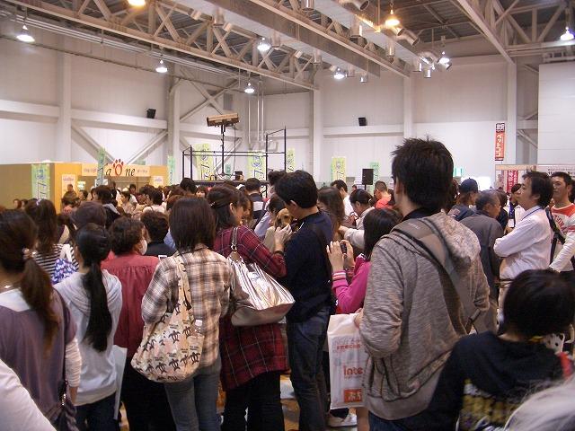 富士市発の新しいコンベンション「FDSC富士山ペットフェスタ」!_f0141310_23374966.jpg