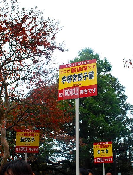 宇都宮餃子祭り2009_c0177814_1557794.jpg