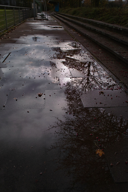 冬の空_b0148617_650435.jpg