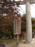 秋といえば・・♪_b0086532_22352413.jpg