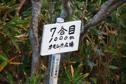 御在所岳 中道を登る 1212m  三重県_d0055236_1042324.jpg