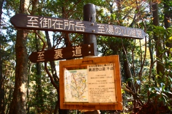 御在所岳 中道を登る 1212m  三重県_d0055236_8144196.jpg